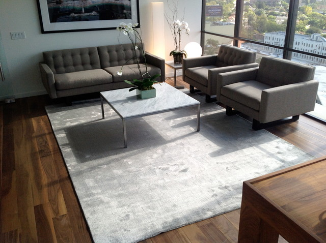 Having Modern Area Rugs Can Help You To Decorate Your Hard Floors And Interior Designs But Why Is This Might Be They Come With A Certain Advantages Lets